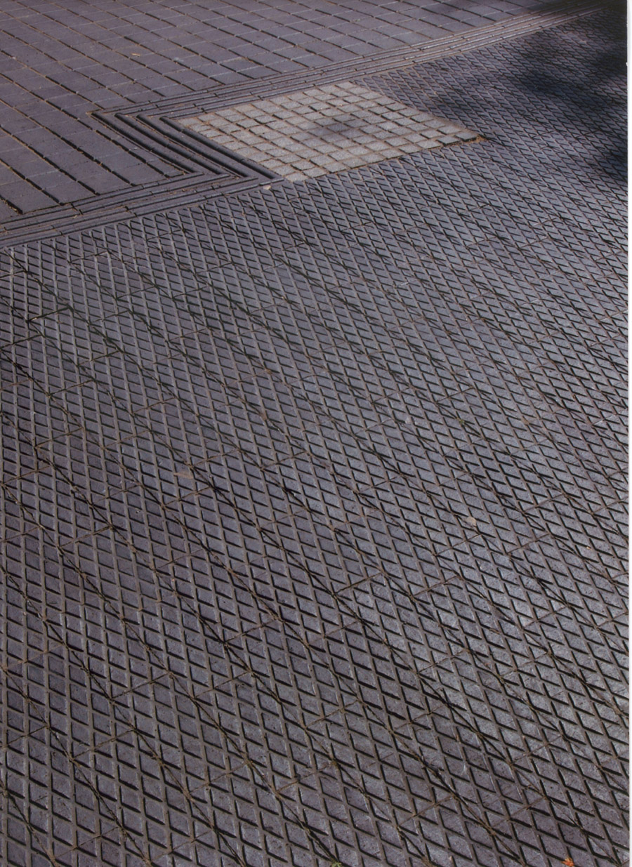 Patterned Pavers