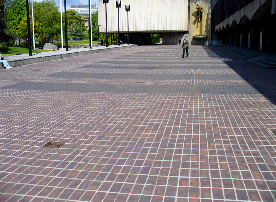 plain Brown Brindle and patterned blue pavers at Newcastle Civic Centre